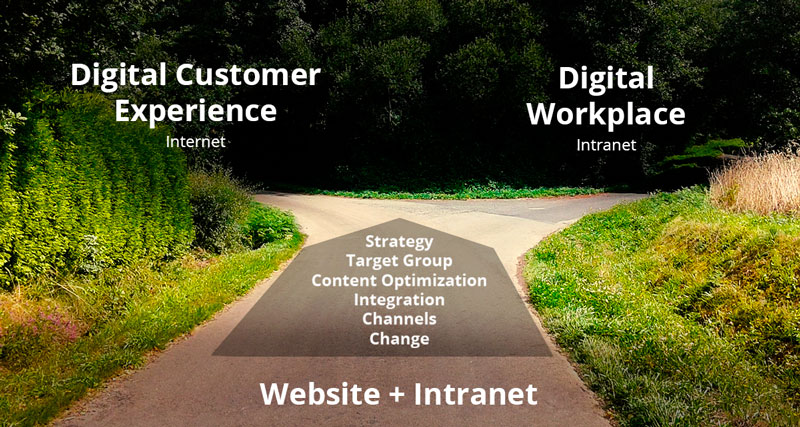 Cms Website Versus Intranet