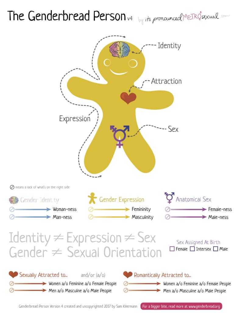 Genderbread Person V4
