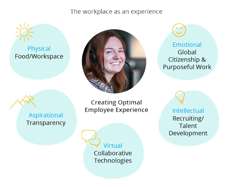 the workplace as experience