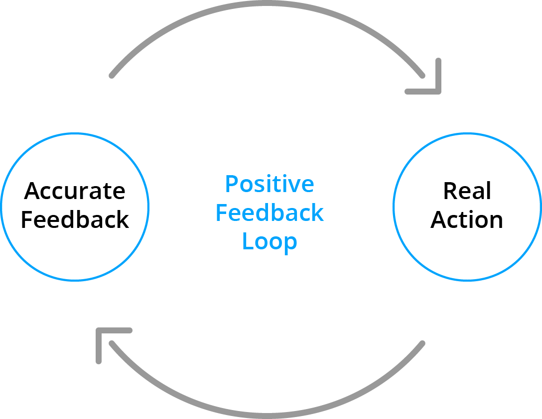 A drawing of a positive feedback loop in which accurate feedback leads to real action.