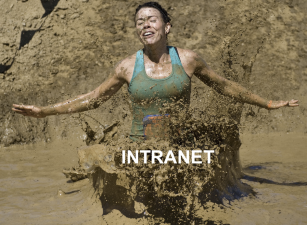 When building an intranet, don't get bogged down by the implementation.