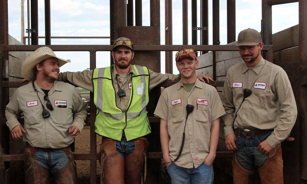 Adams Land & Cattle Team